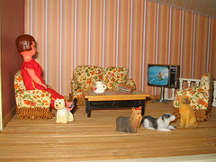 Orvokki's dogs and a new tv