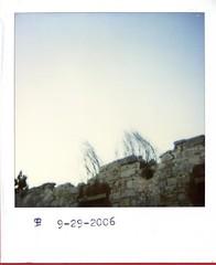 img127_3 (Eleski) Tags: polaroid zeb eleski