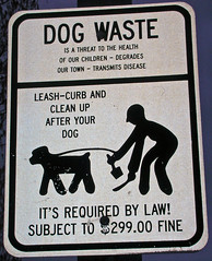 Dog Waste Prohibited