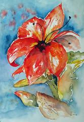 392 Amaryllis (Wuwus Bilder) Tags: kunst aquarell amaryllis watercolour ownpainting