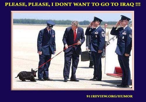 Barney Bush dog Iraq war recruit political humor satire