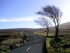 Driving through the Sally Gap (seven years) Tags: road ireland nature gap save3 delete3 delete save save2 sally save4 save5 wicklow delete4pa