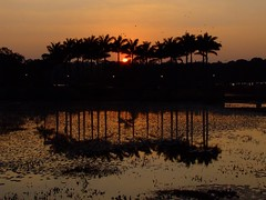 Sunset (l i j) Tags: sunset public night clear lalbagh lij mywinner lijesh fcsv  reflection02       lijeshphotography wwwfacebookcomlijeshphotography  lijreflection