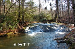 Crabtree Creek (tripod_treker) Tags: bestnaturetnc06 freshwatertnc