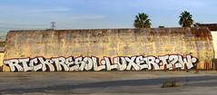 RICK * RESOL * LUXER * I2W (TRUE 2 DEATH) Tags: california autostitch streetart graffiti la losangeles stitch pano graf rick panoramic longbeach graffito graff stitched thewall lbc ilmuro autostitched portofla portoflosangeles autopano resol i2w init2winit luxer autopanopro intowin in2win