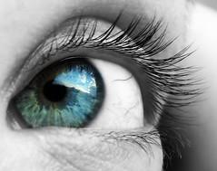 sky (mivella) Tags: blue iris sky bw white black macro reflection green eye texture me topf25 canon cutout reflex topf50 lashes eyelashes a95 powershot eyeball badge topf eyelash mivella window2thesoul windowtothesoul topf55 abigfave shieldofexcellence