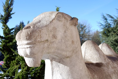 The Sphinx at Volunteer Park