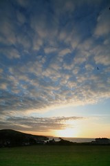 moving on up - altocumulus (s0ulsurfing) Tags: sea sky sun colour bird beautiful beauty silhouette clouds contrast sunrise wonderful landscape rising dawn lyrics high amazing movement warm colours view wind patterns gull gorgeous wideangle 100v10f move isleofwight vista lone lonely exquisite inviting cloudscape impressive wight daybreak primalscream 2007 altocumulus perpsective movingonup screamadelica freshwaterbay sigma1020 instantfave s0ulsurfing bonzag aplusphoto holidaysvacanzeurlaub