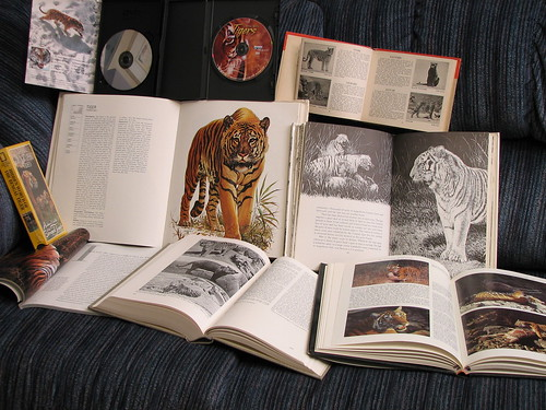 Researching tigers