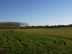 Green Fields / Campos (SamwiseGamgee69) Tags: blue winter sky espaa green landscape spain fields camarzanadetera brillianteyejewel
