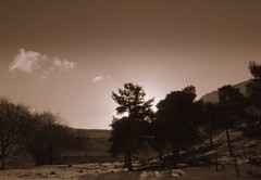 In the Shadows (andrewlee1967) Tags: uk trees england sky blackandwhite bw monochrome sepia clouds landscape mono saddleworth helluva andrewlee instantfave andrewlee1967 andylee1967 focusman5