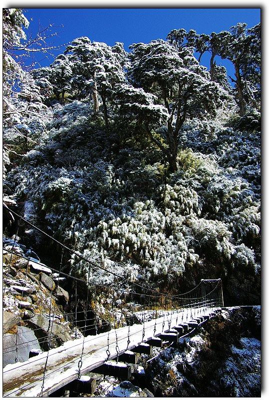 PFC能高越嶺登山賞雪