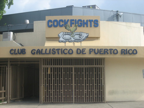 Cockfighting Arena - San Juan, Puerto Rico