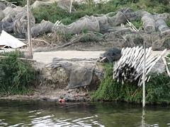 Etang de Vaccarès, Nets (kahala) Tags: étang camargue balade méjanes etangdevaccarès arlesbykahala