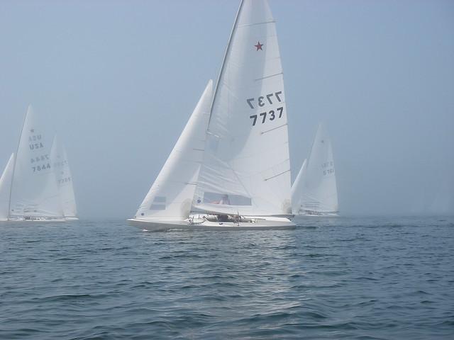 Flotillas in the Mist