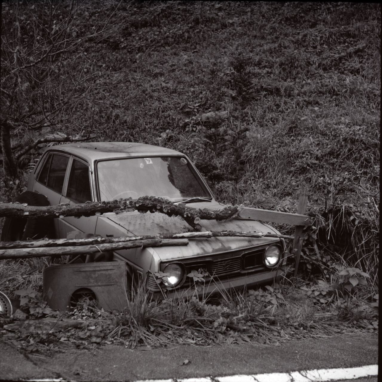 Abandoned Car (Olympus Chrome Six & T-MAX100)