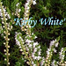 Kirby White Photo 8