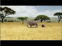 travel, africa travel, travelling, travelling africa, visit africa