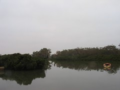 Cannons Creek