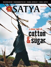 Satya - March 2007