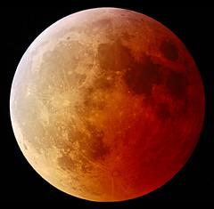 lunar eclipse (Grzesiek:) Tags: blue red orange moon canon eos eclipse bright full telescope copper lunar meade lunareclipse lx200gps interestingness73 i500 explore04mar07