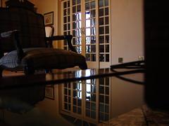 Reflexo na mesa (FeliPepino) Tags: pessoal dscp93a