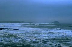 Grey-sea (Sandy Beach Cat) Tags: sea rock grey scotland bass winterbeach tyneinghamme