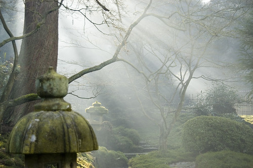 Japanese Garden by MancTog