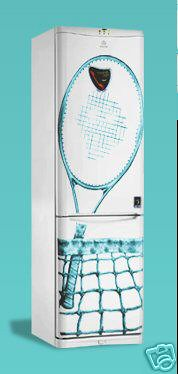 indesit fridge - roger federer