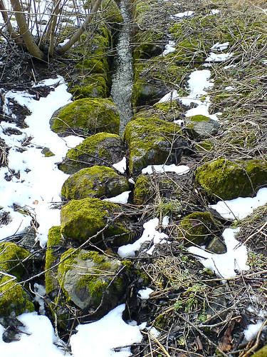 Stream between stones