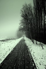 The Longest Way Home (Ewciak & Leto) Tags: road trees winter snow nature fog dark way sadness twilight 500v20f noiretblanc nostalgia emotions canoneos350d mystic 250v10f abigfave v401500 v101200 v76100 v501600 v601700 v701800 v201300 v301400 spittinshells