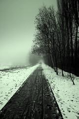 The Longest Way Home (Ewciak & Leto) Tags: road trees winter snow nature fog dark way sadness twilight 500v20f noiretblanc nostalgia emotions canoneos350d mystic 250v10f abigfave v401500 v101200 v76100 v501600 v601700 v701800 v201300 v301400 spittinshells