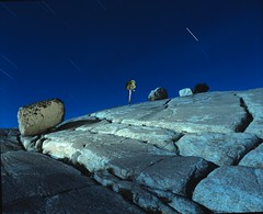 Edge Of The Planet (Sharper24) Tags: tree night surrealism yosemite highsierras soe myspecialplace timeexposures tiogapass olmsteadpoint naturesfinest whatawonderfulworld allyouneedislove awardwinner beautifulearth blueribbonwinner amazingshot beautyisintheeyeofthebeholder flickrsbest flickrspecial abigfave photology platinumphoto anawesomeshot impressedbeauty photopro superbmasterpiece goldenphotographer ithinkthisisartaward wowiekazowie onenesslabyrinth diamondclassphotographer flickrdiamond ishflickr citrit ysplix focuslegacy exemplaryshot colourartaward betterthangood thebestpool goldstaraward