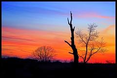 Painted Sky (norjam8) Tags: blue sunset red orange yellow photoshop nc purple pb fp hdr e9 mdc naturesfinest blueribbonwinner supershot md2 abigfave colorphotoaward impressedbeauty wowiekazowie diamondclassphotographer flickrdiamond norjam8 imgp5238hpp2f ysplix norjamss