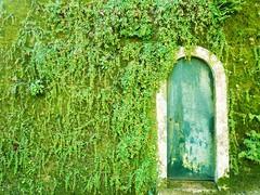 Garden Door - by wauter de tuinkabouter