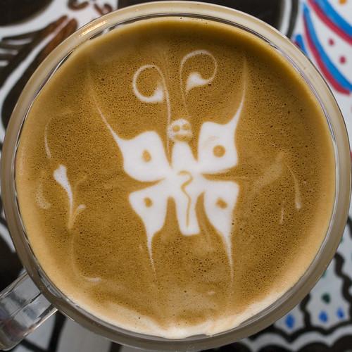 Schmetterling im Kaffee