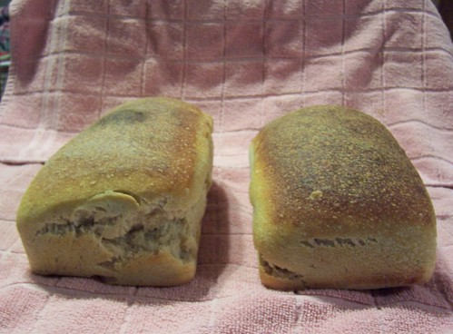 Two Sandwich Loaves