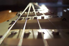 Strings Attached (Tomitheos) Tags: bridge favorite detail macro oneaday closeup composition google flickr cords tracks daily explore fender strings accessories macros saddles 2007 guitarplayer encyclopedia pickups converge electricguitar pickguard centralperspective closerandclosermacro longandmcquade startocaster macromagic magneticpoles guitardetails tomitheos