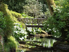 Bodnant Gardens: 1 (Lila Rache) Tags: wood bridge flowers plants green water foliage northwales bodnantgardens favoritegarden