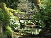Bodnant Gardens: 1 (Lila Rache) Tags: wood bridge flowers plants green water foliage northwales bodnantgardens favoritegarden