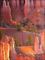 Bryce (katepedley) Tags: morning autumn light usa texture contrast america sunrise utah nationalpark glow panasonic hoodoo bryce ember geology brycecanyon sedimentary fz30 sunsetpoint gndfilter specland bryceamphitheatre