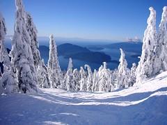 snow4 (Lintonio) Tags: snow vancouver columbia british cypress