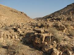 (Dana Levi) Tags: panorama nature rock landscape israel desert natura pebbles pebble negev roccia sassi paesaggio deserto israele sasso neghev nguev