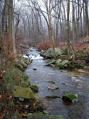 pickering 1 (mtcspike) Tags: autumn fall field fog landscape woods stream far chestersprings