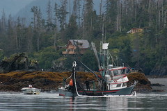 Halibut Cove (Dave Schreier) Tags: ocean trees fog alaska boat fishing cove halibut mywinners abigfave flickrgold anawesomeshot