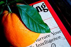 Nurture your [child's] intelligence