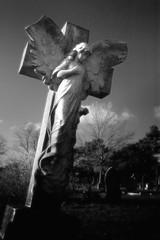 Falling Angel - by Andrew Stawarz