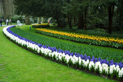 Keukenhof by JackVersloot, on Flickr