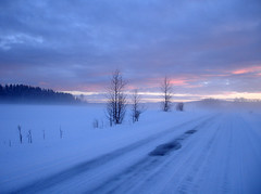 Alone on the road (@rild) Tags: winter norway norge vinter february vestre februar 2007 toten blueribbonwinner thecontinuum rild 200750plusfaves superbmasterpiece beyondexcellence favemegroup2 fa