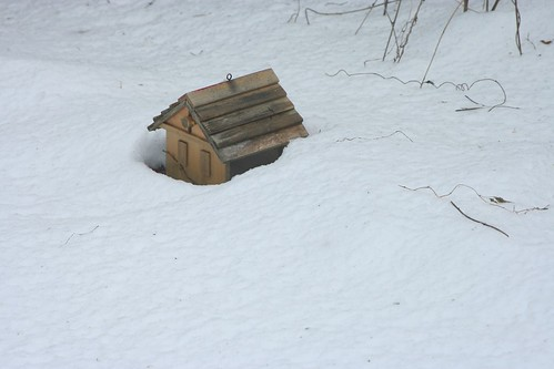 Little House in Snow